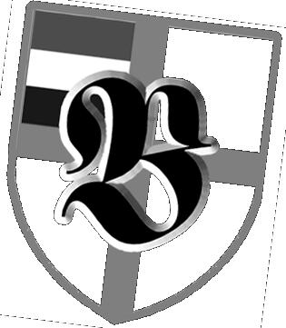bsw_logo_desatrot